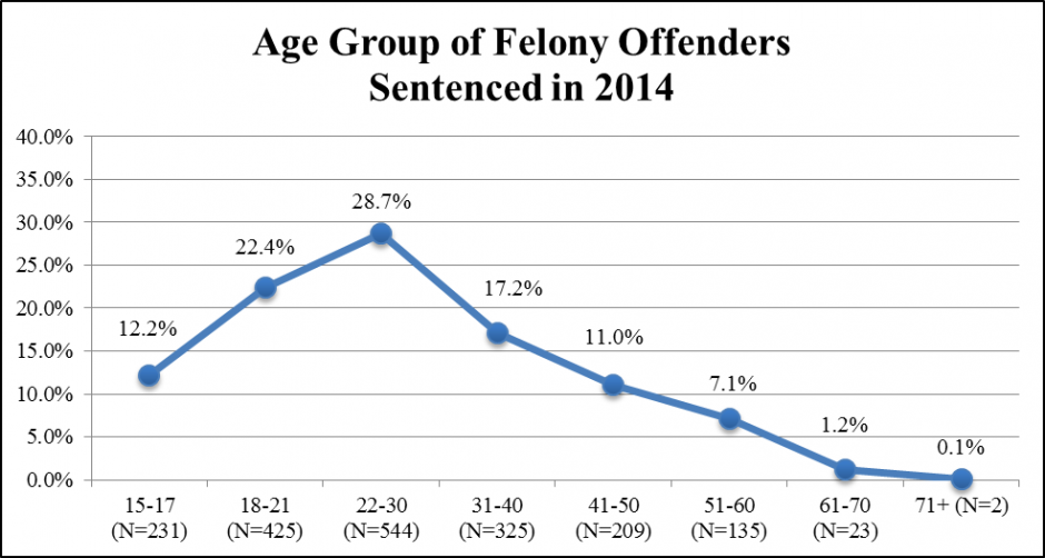 Data Chart: Age Group of Felony Offenders Sentenced in 2014